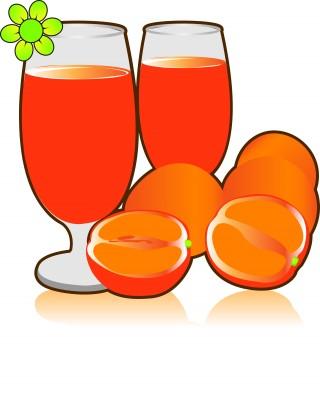 Vector de jugos de naranja
