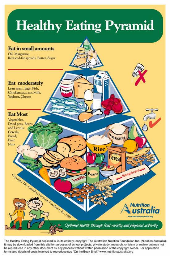 Pirámides Alimentarias para Asia y las Islas del Pacífico: India, Turquía, China,Tailandia, Japón y Australia. (6/6)