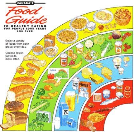 Pirámides Alimentarias para América del Norte: Canadá y Estados Unidos. (1/3)