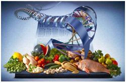 nutrigenómica
