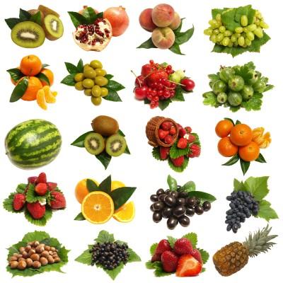 Worksheet. sanda  Consejo Nutricional