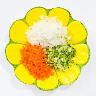 cebolla, zanahoria y ajos tiernos en plato decorativo
