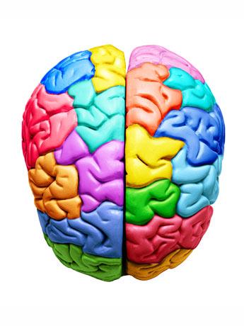 habilidad cognitiva