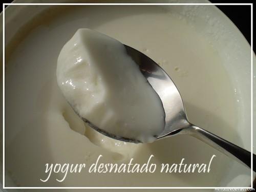 lácteo desnatado