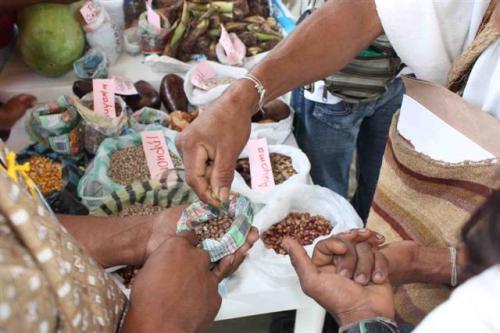 venta de alimentos