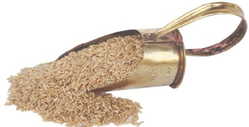 granos de arroz integral