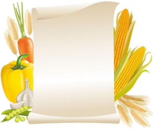 vector de verduras y cereales