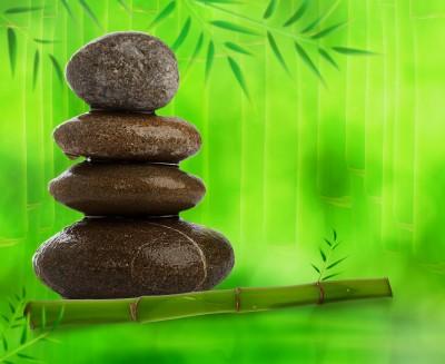 caña de bambú y piedras