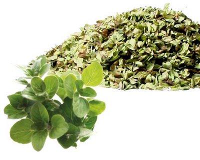hierba aromática