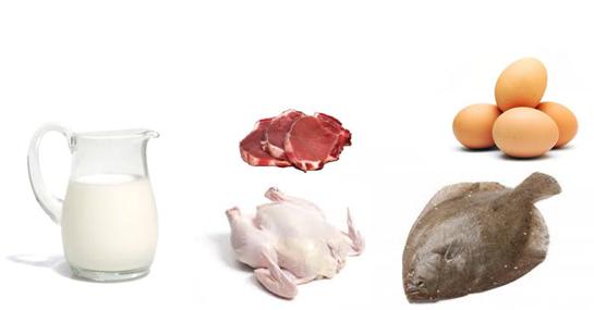 Hacia un equilibrio en la alimentaci n consejo nutricional - Alimentos vegetales ricos en proteinas ...