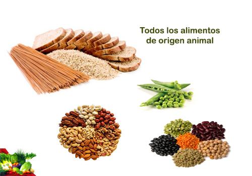 Las mejores fuentes de tiamina o vitamina b1 consejo nutricional - Alimentos ricos en b1 ...