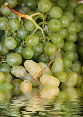 reflejo de fruta