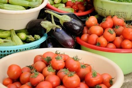 tomates, berenjenas