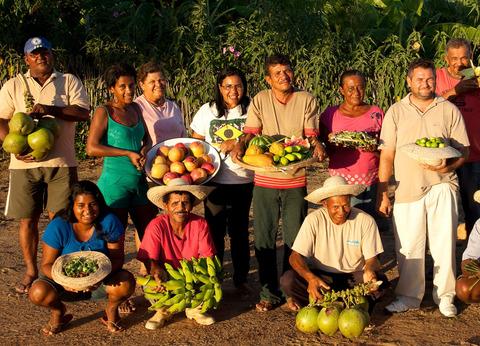 agricultores en el campo