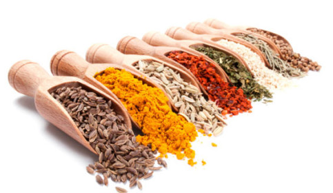Condimentos o especias consejo nutricional for Cultivo de plantas aromaticas y especias