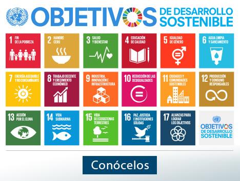 Agenda ODM 2015