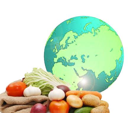día mundial de la alimentación 2015
