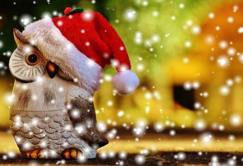 navidad sana